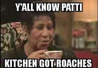roaches2